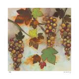 Botanical Limited Edition