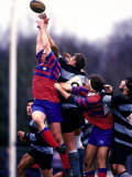 Rugby (PCN Photography)