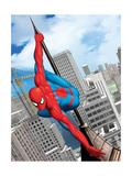 Spider-Man Panel