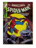 Spider-Man (Marvel Vintage)