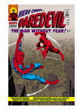 Daredevil (Marvel Collection)