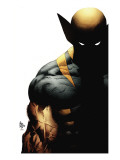 Wolverine Character (Marvel Collection)