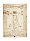 Vitruvian Man by da Vinci