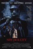 Ice-T (Films)