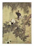 Hua Yan