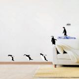 Bird Species
