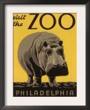 Zoo Advertisements