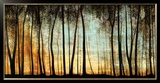 Natural Landscapes (Framed)