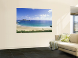 Hawaii (Wall Murals)