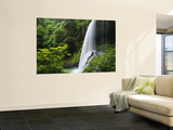 Oregon (Wall Murals)
