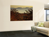 Tennessee (Wall Murals)