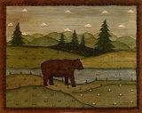 Bears by Species