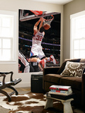 Blake Griffin (Top Searched Players)