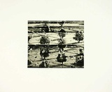 Limited Edition Etching