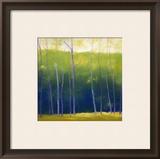 Framed Decorative Art Collection