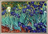 Vincent Van Gogh (Framed)