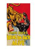 Bring 'Em Back Alive (1932)