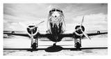 Airplanes (B&W Photography)