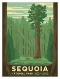 California Travel Ads