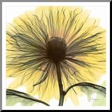 Sunnyside Yellow (Framed)