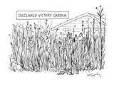 Suburban New Yorker Cartoons