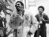 Stevie Wonder (Ebony)