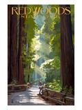 California Travel Ads (Decorative Art)