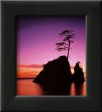 Purple (Framed)