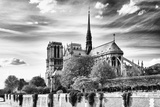 Cathedrals by Name