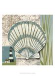 Seashells Collage