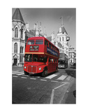 Buses (Color Photography)