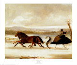 Carriages & Sleighs