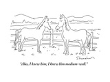 Horses New Yorker Cartoons