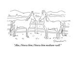 Horses New Yorker Cartoons