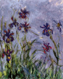 Irises by Monet