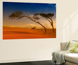 Australia (Wall Murals)