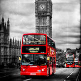 Buses (Photography)