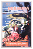 Bermuda Travel Ads