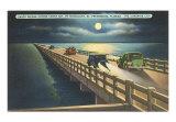 Bridges (Vintage Photography)