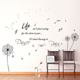 Floral Wall Stickers