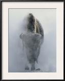 National Geographic Framed Art
