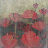 Poppies I