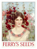 Ferry&#39;s Seed  Garden Maiden