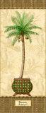 Botanical Palm II