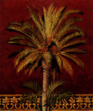 Canary Palm
