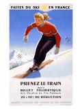 Downhill Snow Ski France