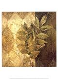 Leaf Patterns IV