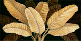 Calypso Leaves I