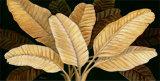 Calypso Leaves I
