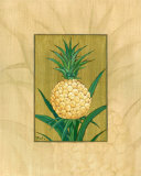 Sugar Loaf Pineapple